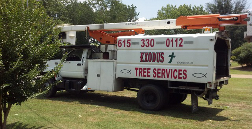 Truck, Tree Services in Mt. Juliet, TN